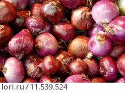 Купить «Onions, earth treasures», фото № 11539524, снято 19 апреля 2019 г. (c) PantherMedia / Фотобанк Лори