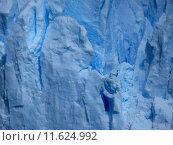 Купить «blue water ice turquoise fragile», фото № 11624992, снято 14 ноября 2018 г. (c) PantherMedia / Фотобанк Лори