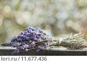 Купить «Lavender bouquet», фото № 11677436, снято 23 июля 2019 г. (c) PantherMedia / Фотобанк Лори