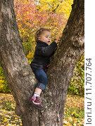 Купить «Cute little girl sitting in a tree in autumn.», фото № 11707764, снято 19 января 2019 г. (c) PantherMedia / Фотобанк Лори