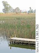 Купить «Jetty on lake», фото № 11961760, снято 22 марта 2019 г. (c) PantherMedia / Фотобанк Лори