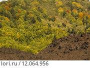 Купить «white caucasian nature blue green», фото № 12064956, снято 18 октября 2018 г. (c) PantherMedia / Фотобанк Лори