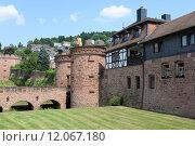 Купить «tower historical germany goal gate», фото № 12067180, снято 22 февраля 2019 г. (c) PantherMedia / Фотобанк Лори