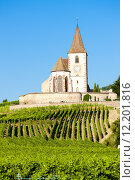 Купить «Hunawihr, Alsace, France», фото № 12201816, снято 26 марта 2019 г. (c) PantherMedia / Фотобанк Лори