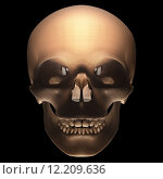 Купить «Skull on black background with clipping path included.», фото № 12209636, снято 24 января 2020 г. (c) PantherMedia / Фотобанк Лори