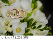 Купить «Two wedding rings in infinity sign. Love concept.», фото № 12258508, снято 18 июля 2018 г. (c) PantherMedia / Фотобанк Лори