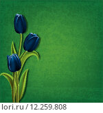 Купить «abstract floral background with tulips», иллюстрация № 12259808 (c) PantherMedia / Фотобанк Лори