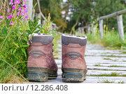 Купить «nature path way shoes hike», фото № 12286408, снято 21 ноября 2018 г. (c) PantherMedia / Фотобанк Лори