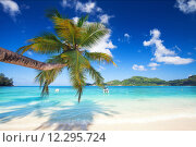 Купить «water sea beach ocean tropical», фото № 12295724, снято 15 января 2018 г. (c) PantherMedia / Фотобанк Лори
