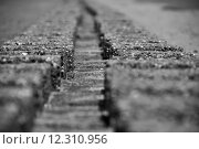 Купить «wall line protection row stones», фото № 12310956, снято 23 сентября 2018 г. (c) PantherMedia / Фотобанк Лори
