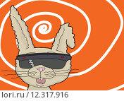 Купить «Dizzy Rabbit with 3D Lenses», иллюстрация № 12317916 (c) PantherMedia / Фотобанк Лори