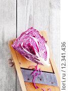 Купить «Sliced Purple Cabbage on Top of Shredder», фото № 12341436, снято 12 декабря 2017 г. (c) PantherMedia / Фотобанк Лори