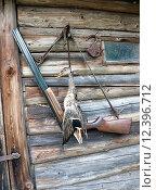 Купить «Охотничье ружье и добытая утка», фото № 12396712, снято 26 августа 2015 г. (c) Ласточкин Евгений / Фотобанк Лори