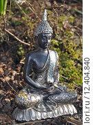 Купить «Buddha Figur », фото № 12404840, снято 23 февраля 2019 г. (c) PantherMedia / Фотобанк Лори