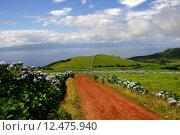 Купить «azores landscape», фото № 12475940, снято 23 февраля 2019 г. (c) PantherMedia / Фотобанк Лори