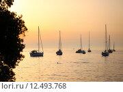 Купить «Anchored sailboats at sunset», фото № 12493768, снято 23 февраля 2019 г. (c) PantherMedia / Фотобанк Лори