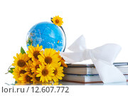 Купить «Школьный глобус с книгами и цветами», фото № 12607772, снято 21 июля 2015 г. (c) Peredniankina / Фотобанк Лори