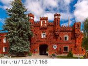 Купить «Kholm Gate of Brest Fortress at morning, Belarus», фото № 12617168, снято 17 января 2019 г. (c) PantherMedia / Фотобанк Лори