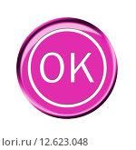 Купить «symbol button ok right pictogram», фото № 12623048, снято 23 февраля 2019 г. (c) PantherMedia / Фотобанк Лори