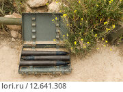 Купить «Макет ящика со снарядами для противотанковой пушки. 35-я батарея, Севастополь, Крым», фото № 12641308, снято 14 июля 2015 г. (c) Ивашков Александр / Фотобанк Лори