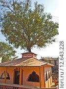 Купить «Храм Веталы Махараджа», фото № 12643228, снято 5 февраля 2015 г. (c) Вячеслав Беляев / Фотобанк Лори