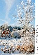 Купить «Зимний день в дачном поселке», фото № 12651140, снято 7 декабря 2010 г. (c) Татьяна Кахилл / Фотобанк Лори