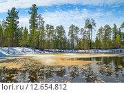 Купить «Весенний пейзаж», фото № 12654812, снято 6 мая 2015 г. (c) Икан Леонид / Фотобанк Лори