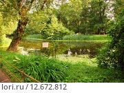 Купить «Старинный пруд в Ботаническом саду МГУ на проспекте Мира в Москве», эксклюзивное фото № 12672812, снято 14 июля 2009 г. (c) lana1501 / Фотобанк Лори