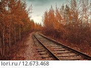 Купить «Железная дорога уходит в даль. Осенний пейзаж», фото № 12673468, снято 18 июня 2019 г. (c) Зезелина Марина / Фотобанк Лори