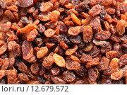 Купить «brown brunette dried grape vine», фото № 12679572, снято 25 марта 2019 г. (c) PantherMedia / Фотобанк Лори