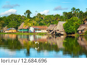 Купить «Amazon Jungle Village», фото № 12684696, снято 13 декабря 2017 г. (c) PantherMedia / Фотобанк Лори