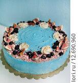 Торт с шоколадом. Стоковое фото, фотограф Елена Поминова / Фотобанк Лори