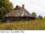 Два заброшенных дома и крапива. Стоковое фото, фотограф Mike The / Фотобанк Лори