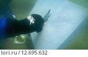 Купить «Подводный художник Юрий Адексеев рисует картину под водой в озере Байкал», видеоролик № 12695632, снято 5 сентября 2014 г. (c) Некрасов Андрей / Фотобанк Лори