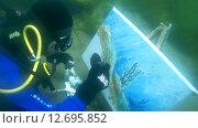 Купить «Подводный художник Юрий Адексеев рисует картину под водой в озере Байкал», видеоролик № 12695852, снято 5 сентября 2014 г. (c) Некрасов Андрей / Фотобанк Лори