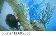 Купить «Подводный художник Юрий Адексеев рисует картину под водой в озере Байкал», видеоролик № 12695860, снято 5 сентября 2014 г. (c) Некрасов Андрей / Фотобанк Лори