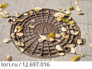 Купить «Металлический люк дождевой канализации с осенними листьями», эксклюзивное фото № 12697016, снято 15 сентября 2015 г. (c) Илюхина Наталья / Фотобанк Лори
