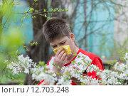 Купить «Boy with allergic rhinitis in spring garden», фото № 12703248, снято 4 мая 2015 г. (c) Володина Ольга / Фотобанк Лори