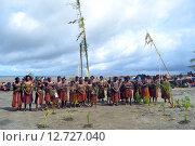 Традиционный танец племени на фестивале масок. Папу Новая Гвинея (2011 год). Редакционное фото, фотограф Daniil Nasonov / Фотобанк Лори