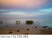 Берег Ладожского озера на закате. Стоковое фото, фотограф Наталья Гарнелис / Фотобанк Лори