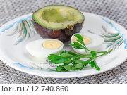Купить «Половинка плода авокадо сорта Reed и вареное яйцо», фото № 12740860, снято 18 сентября 2015 г. (c) Алёшина Оксана / Фотобанк Лори