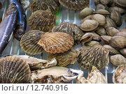 Купить «Морепродукты (Seafood)», фото № 12740916, снято 16 сентября 2015 г. (c) Алёшина Оксана / Фотобанк Лори