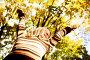 Счастливая женщина на фоне осени, фото № 12746940, снято 1 октября 2010 г. (c) Иван Михайлов / Фотобанк Лори