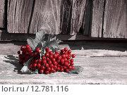 Ветвь с красными ягодами калины на пороге старого дома. Стоковое фото, фотограф Дарья Андрианова / Фотобанк Лори