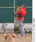 Купить «Волонтер приюта для бездомных животных», фото № 12787364, снято 7 сентября 2012 г. (c) Елена Мусатова / Фотобанк Лори