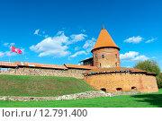 Купить «Каунас, Литва. Старая крепость», фото № 12791400, снято 19 сентября 2015 г. (c) Ласточкин Евгений / Фотобанк Лори