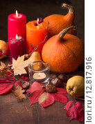 Осенняя композиция. Стоковое фото, фотограф Ника Денова / Фотобанк Лори