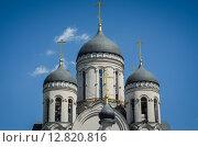 Купола храма иконы Божией Матери «Утоли моя печали» в Марьине. Стоковое фото, фотограф Сергей Макаров / Фотобанк Лори