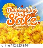 Купить «День благодарения, распродажа», иллюстрация № 12823944 (c) Владимир / Фотобанк Лори