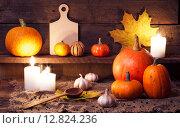 Купить «Натюрморт с тыквами на праздник Хэллоуин», фото № 12824236, снято 6 октября 2015 г. (c) Евдокимов Максим / Фотобанк Лори